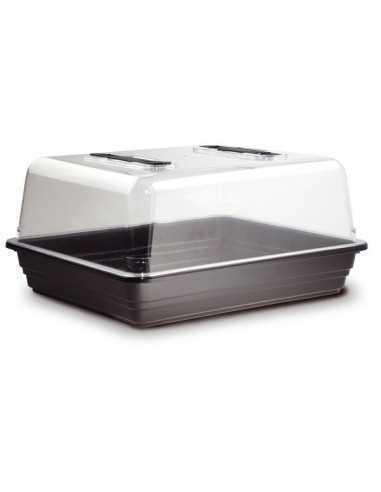 Propagador Semillero - Mini invernadero
