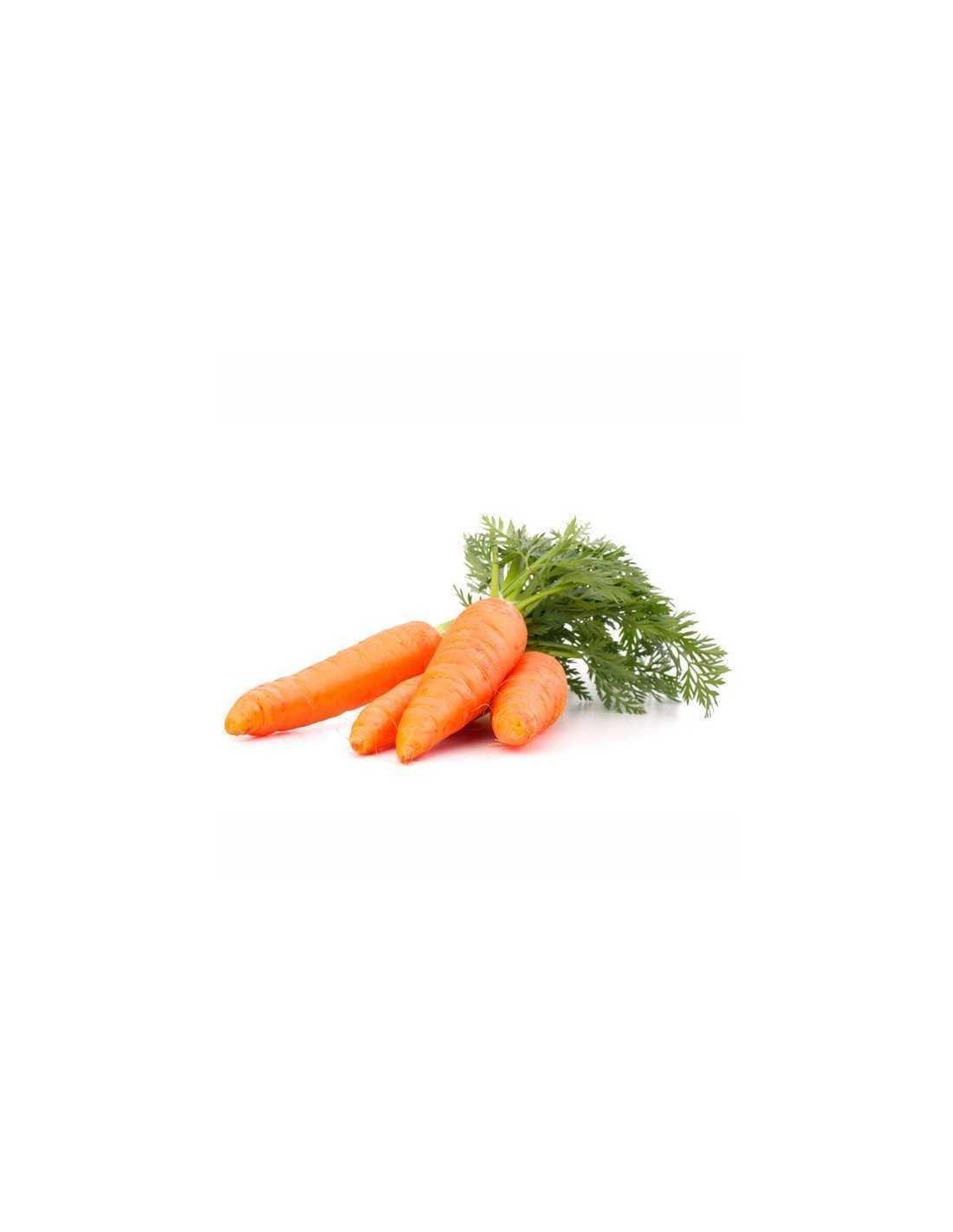 Zanahoria Subespecie sativus, la zanahoria, pertenece a la familia de las umbelíferas, también denominadas apiáceas. zanahoria