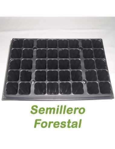 Semilleros forestales