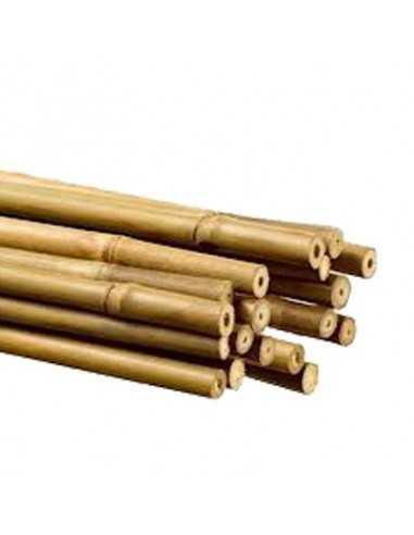 Tutor de caña de bambú 120 cm