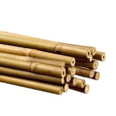 Tutor de caña de bambú 150 cm