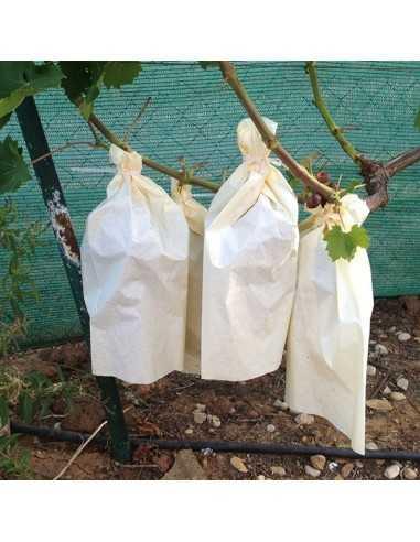 Bolsa de papel para uvas 35 X 25 cm -...