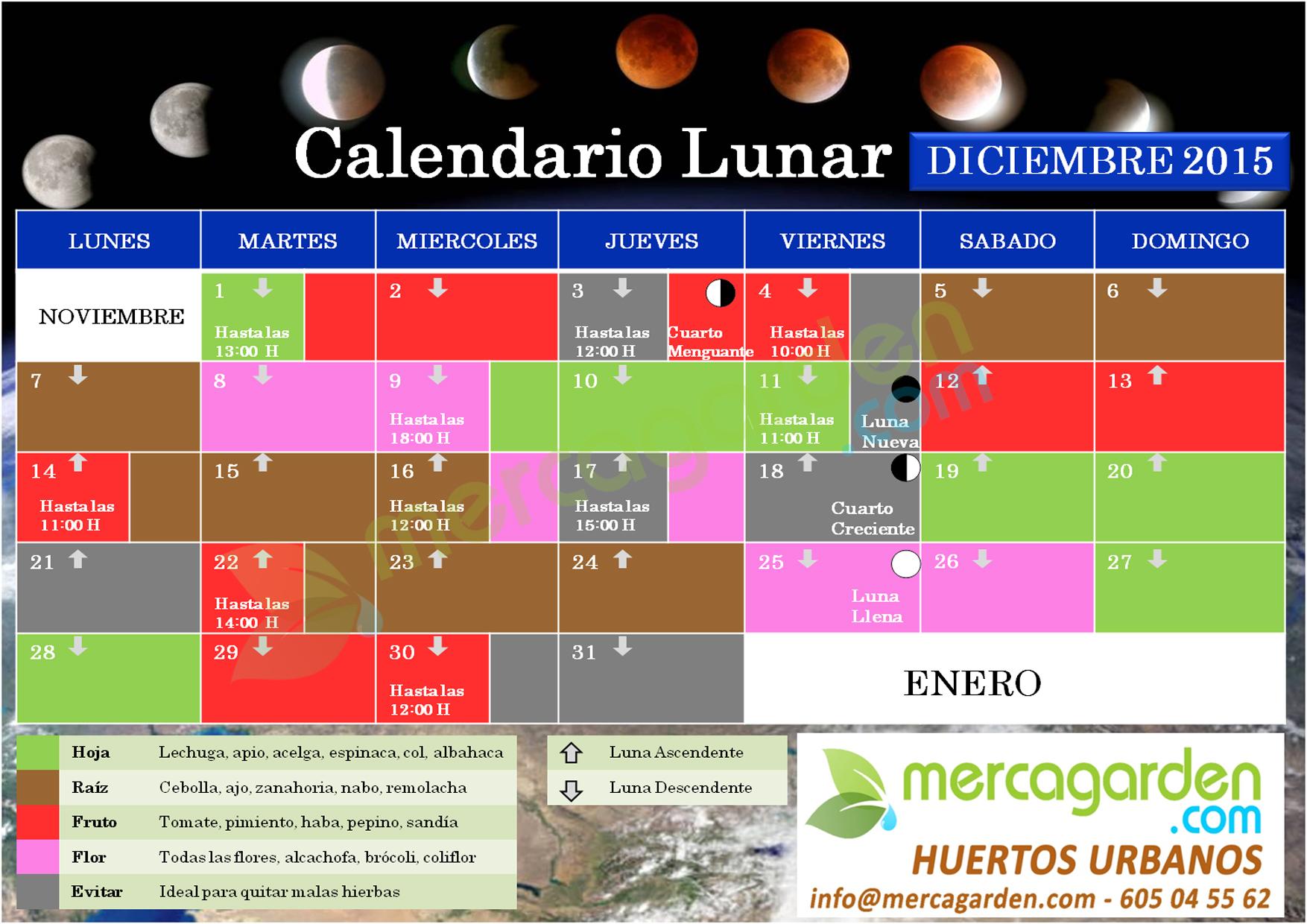 Calendario lunar Diciembre 2015